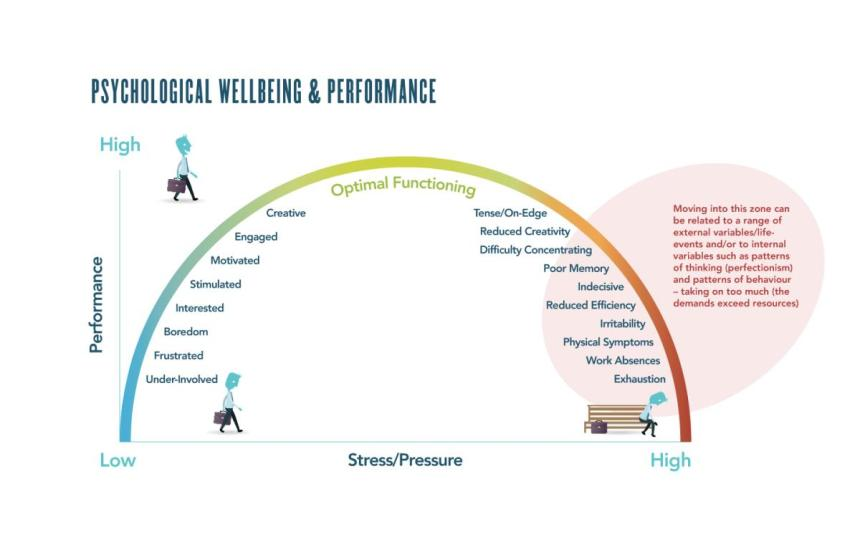 Wellbeing & performance graph